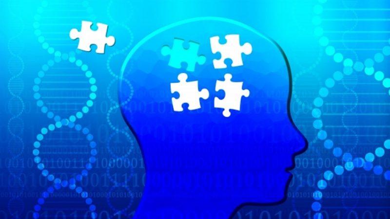脳とパズル